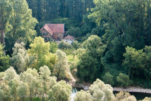 Rheininsel Kieselwörth - Bild Nr. 201508230816