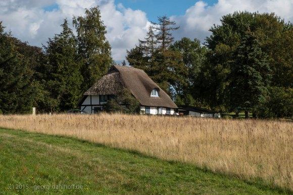Haus in Freesenort - Bild Nr. 201509263305