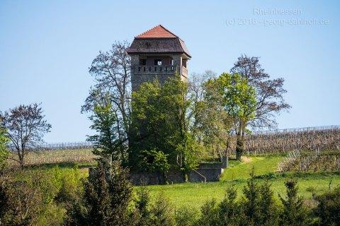 Alter Wasserturm von Wöllstein - Bild Nr. 201605050144