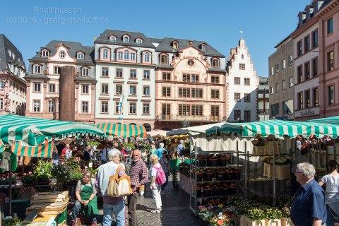 Wochenmarkt Mainz - Bild Nr. 201605070163