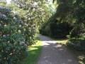 VVG-4-05:16 Path