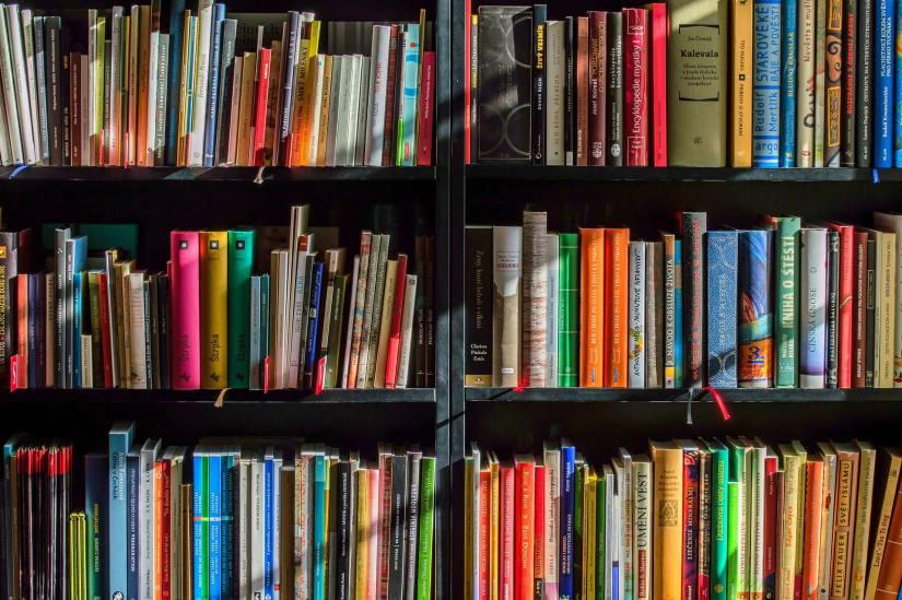Image of colorful books on a shelf. A list of money mindset and abundance mentality books.