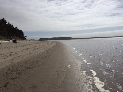 A pristine beach at Sand Lake.