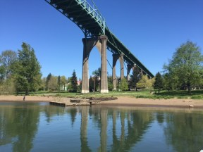 The western end of the St. Johns Bridge towers above Cathedral Park.