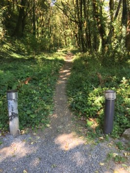 The entrance to Keller Woodland, 40 acres of Douglas fir forest.