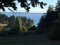 A view of Buck Bay from Juliana and Carl's place near Olga.
