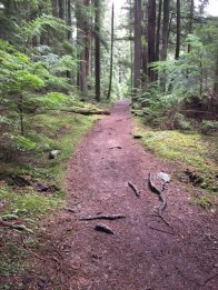 Trails are generally well maintained in Moran State Park.