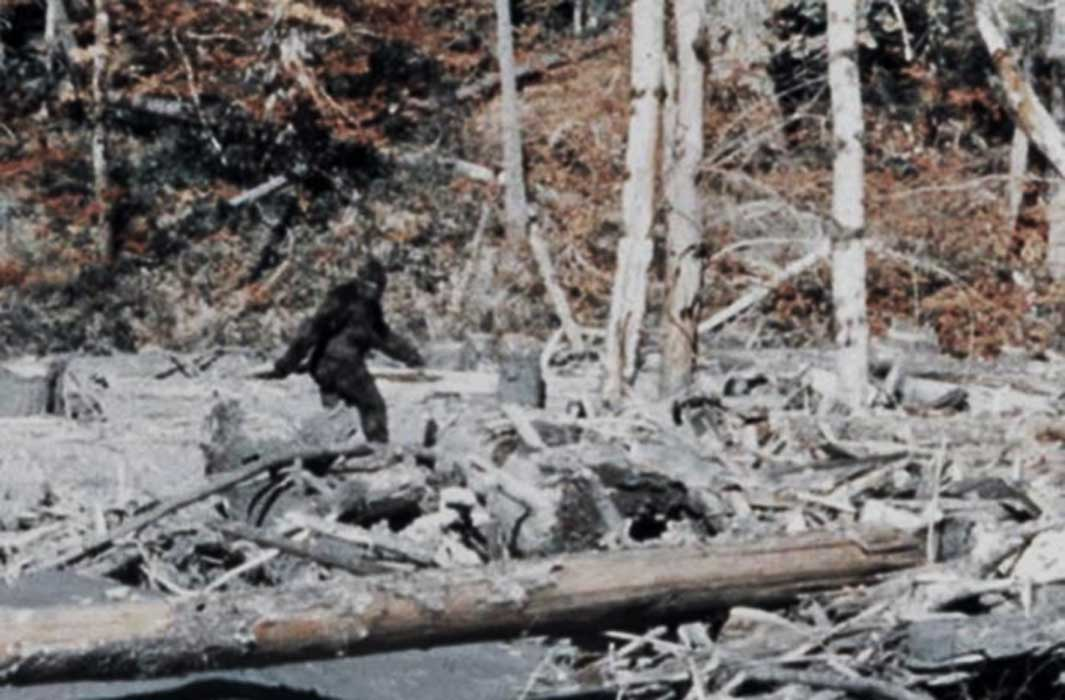 The Deep State Bigfoot Coverup