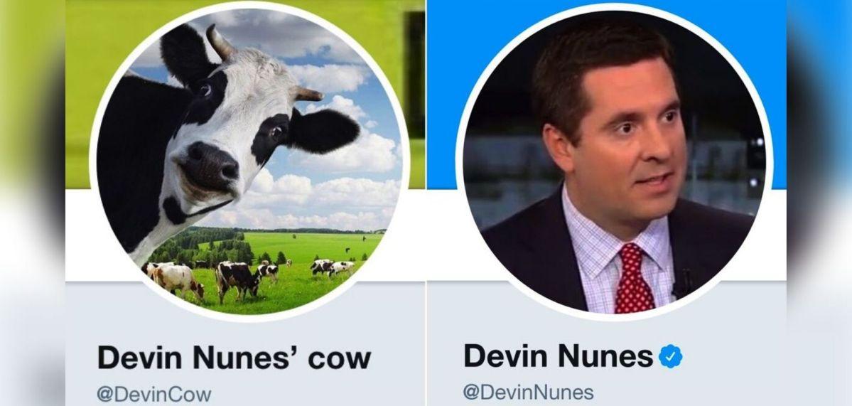 Devin Nunes' Cow