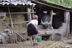 womanfeedingwaterbuf