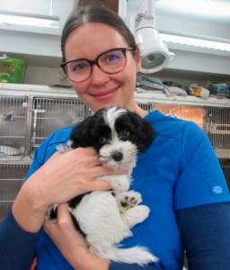 Lara Pasternak-Veterinary Assistant at Georgetown Veterinary Hospital