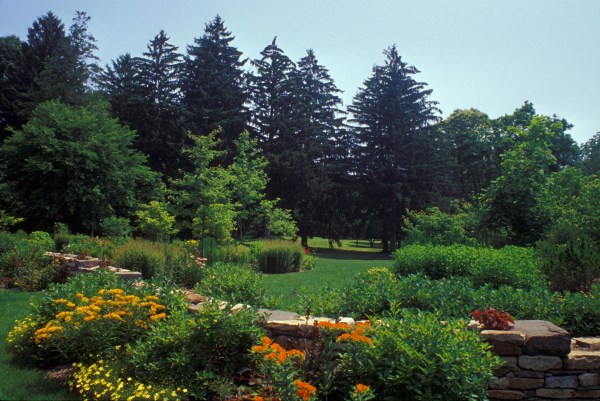 Pennsylvania Types Of Bushes For Landscaping Year Of Clean Water