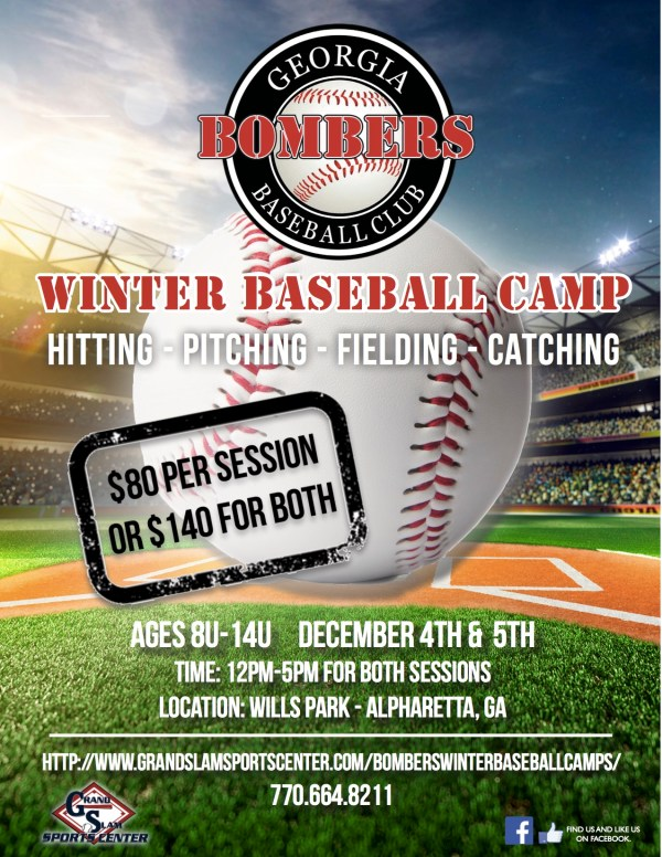 Baseball Winter Camp Flyer