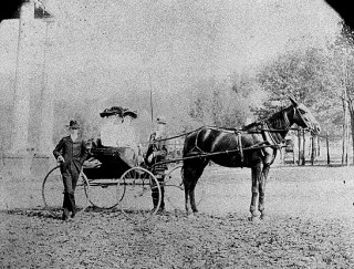 Photograph of ladies in horse and buggy