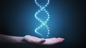 Methylation and female reproductive health