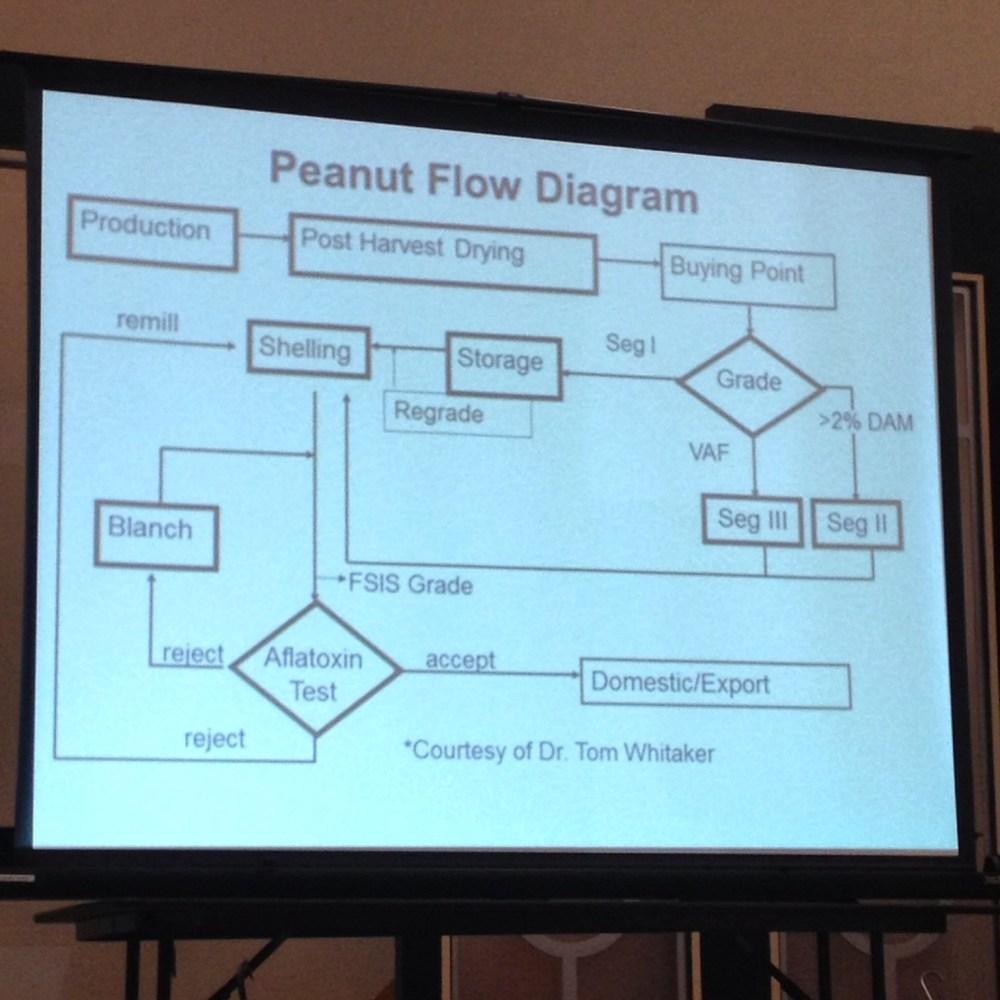 medium resolution of peanut flow diagram provided by birdsong peanuts