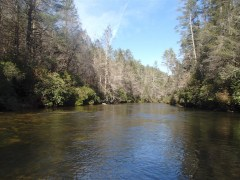 Nice scenic look at the Delayed Harvest section of the Chattooga.