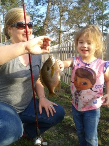 Paisley Barber of Nashville fished with her mother, Shannon on Saturday in a local pond and caught almost a dozen of these nice bluegills. Way to go, Paisley!