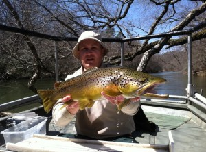 trout bnt large Toccoa TW sampling march 2014[1]