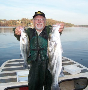 Stripers from Lake Lanier.