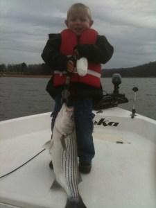 Lake Lanier winter striper.
