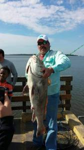 Black drum caught from the St. Simons Pier.