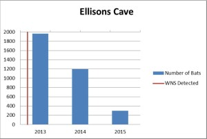 Ellisons Cave showing declines in population since WNS was confirmed in Georgia.