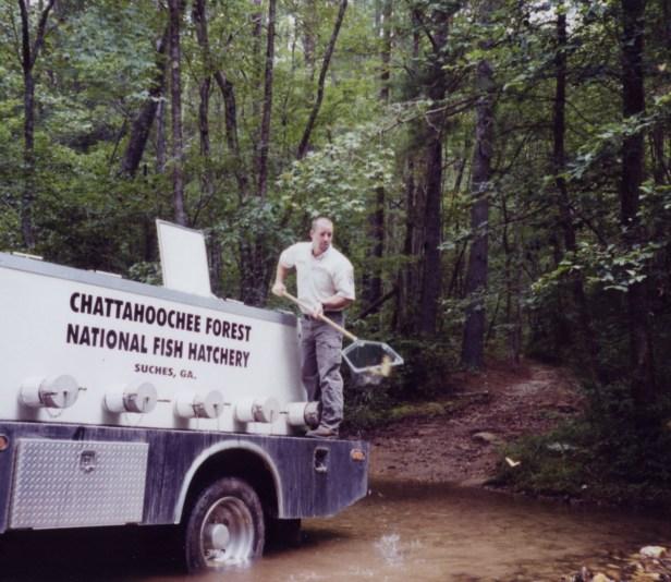 Chatt NFh Kelly Taylor stocks fish.jpg