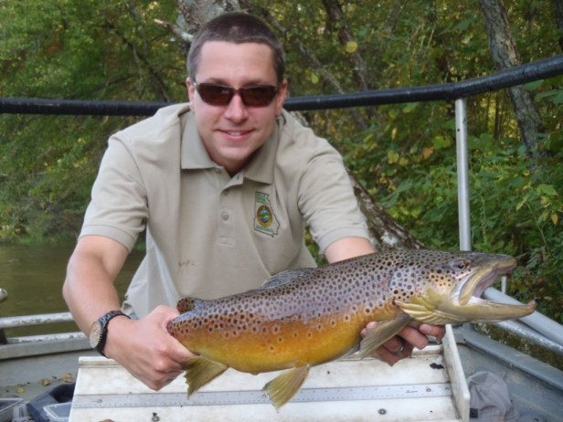 trout-bnt-large-toccoa-tw-sampling-damer-sept-2012