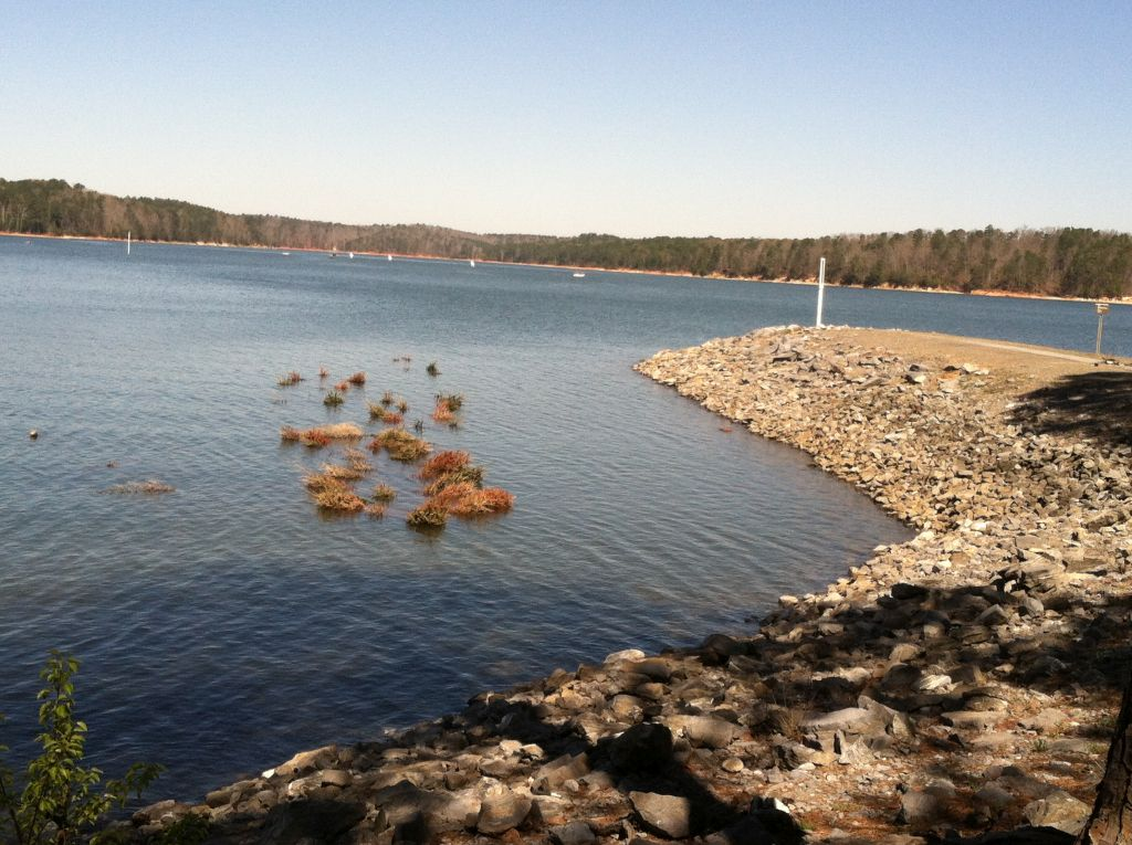 fish-attractors-allatoona-march-2015-resized