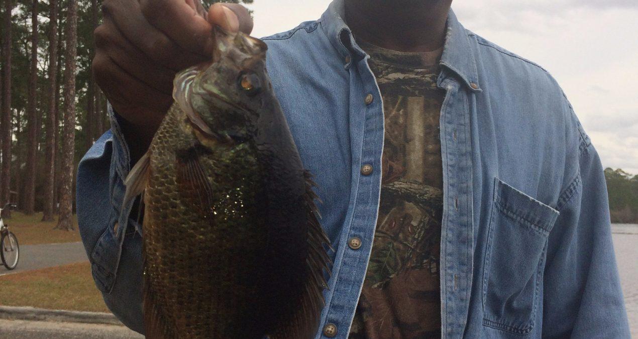 Georgia Fishing Report: February 24, 2017