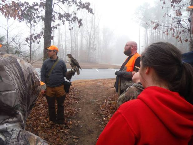 falconry hunt and learn