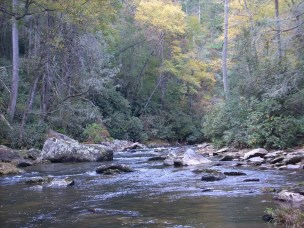 chattooga erwa 10-13-12 pic4 small