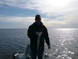 seatrout gulf WallyW 1-25-18