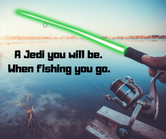 A Jedi you will be. (2)