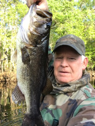Jerry Johnson caught this nice bass from the Satilla River.
