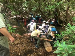 Stream Structure Work - 2018 GA TU Trout Camp