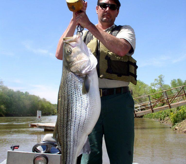Georgia Fishing Report: August 31, 2018