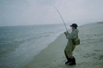 fishing NJ surf pat May05