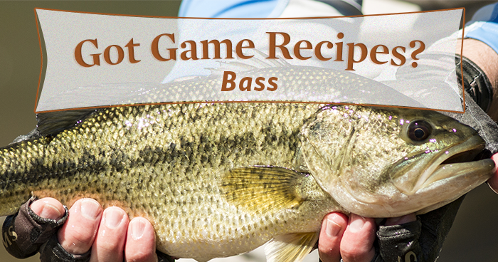 5 Mouth-Watering Bass Recipes