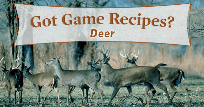 Oh Deer! 7 Venison Recipes You've Gotta Try