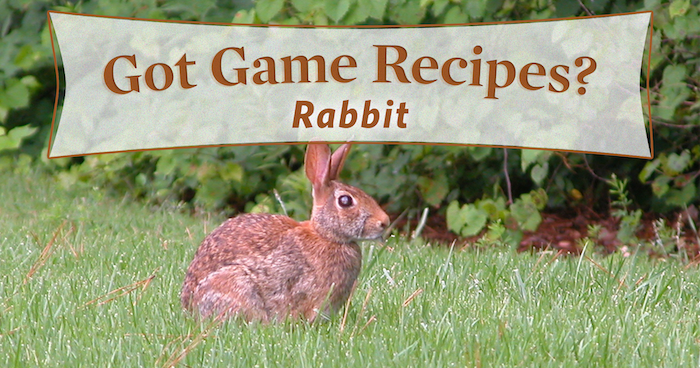 Cottontail in the Kitchen: 4 Yummy Rabbit Recipes
