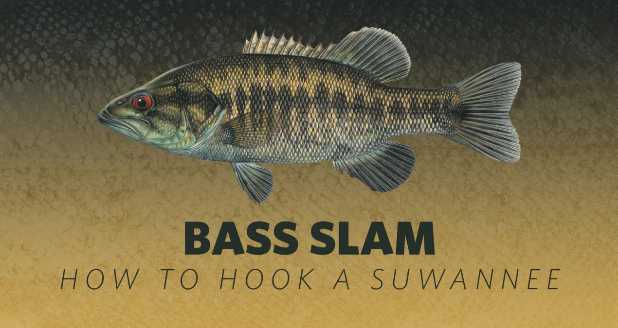 How to Hook A Bass Slam: Suwanee Bass