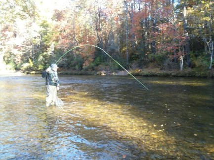 trout fishing chattooga DH Tommy C Nov 2018