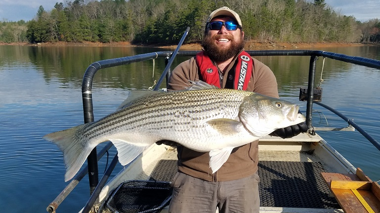 The Striped Bass 60++ Pound Club