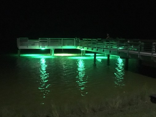 IMG_2852 - Patrick New Pier Lights 9 19