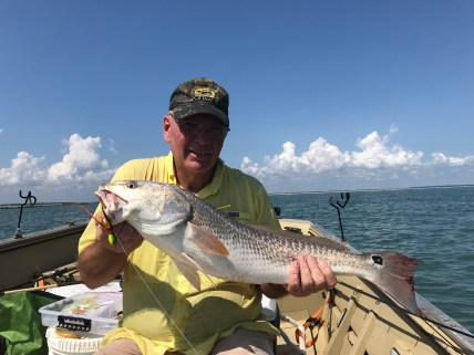 "Mike Sellers from LaGrange had a ""Surf and Turf"" trip to southeast Georgia this past Tuesday. In this photo is the ""surf"" – read his story below in the Southeast Fishing Report for the whole story, including the ""turf."""