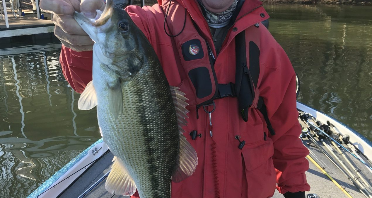 Georgia Fishing Report: January 10, 2020