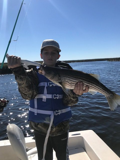 Cason and brother Michael (shown here) had a blast last weekend catching striped bass on the lower St. Marys River with their dad Brandon. Their pair of stripers ate live shrimp under a float.