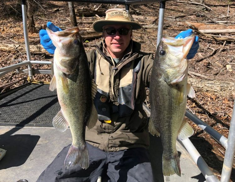 Good numbers of largemouth found!